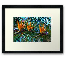 Trio in Paradise Framed Print