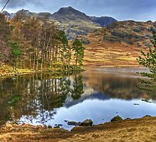The February Tarn.. by Jamie  Green