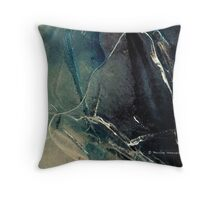 Mother and child - ice work Throw Pillow