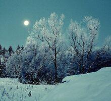 Moonlight Serenade by Alan Mattison