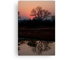 Lion Sands Sunset Canvas Print