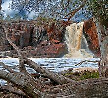 Nigretta Falls by mspfoto