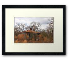 Shades Of Rust Framed Print