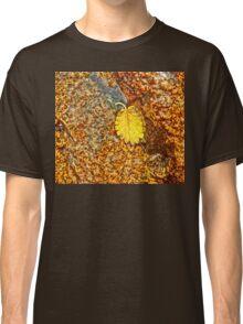 Premature Autumn Aspen Leaf Classic T-Shirt