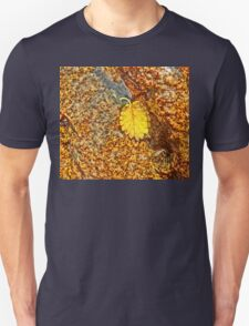 Premature Autumn Aspen Leaf T-Shirt