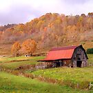 Ashe County Barn by Annlynn Ward