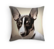 the amazing sparky Throw Pillow