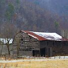 Shull's Barn by Annlynn Ward