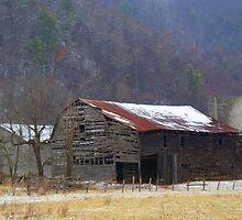 Shull's Barn by Annlynn Ward