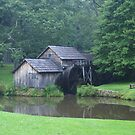 Blue Ridge Parkway's-Mabry Mill by Annlynn Ward