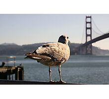 Golden Gate View Photographic Print