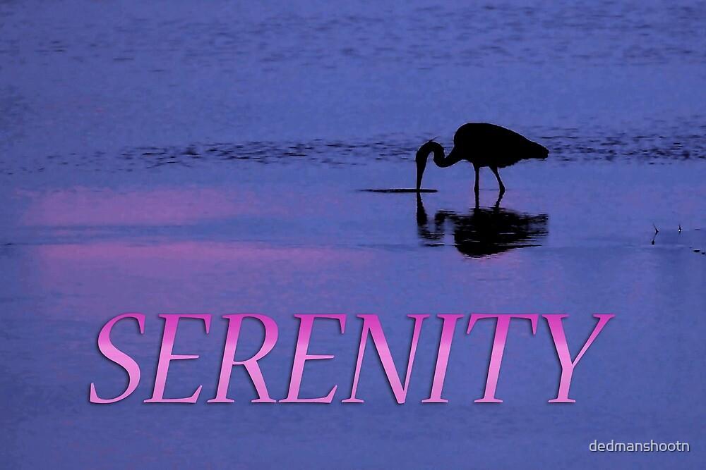 serenity heron by dedmanshootn