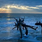 Sea Watch--Monster at Dawn by Joe Jennelle