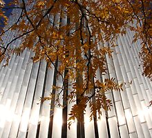 Morning, Ecolab Headquarters, Saint Paul by Timothy Wilkendorf