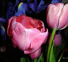 Spring in Satin by RC deWinter