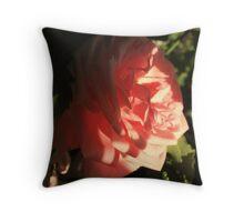 The hidden beauty Throw Pillow