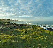 Blue and Green Sunrise - Cambria, California by Mike Capone