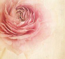 Sogno romantico by Priska Wettstein