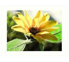 Fractalius Sunflower Art Print