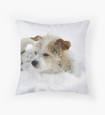 Just To Much Fun Throw Pillow