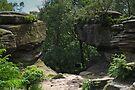 At Brimham Rocks by WatscapePhoto
