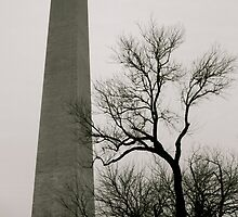 National Monument in the Winter  by Rae Breaux