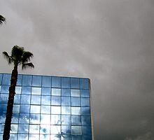 Blue Sky Reflection  by Rae Breaux