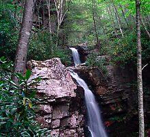 Gentry Creek Falls by Annlynn Ward