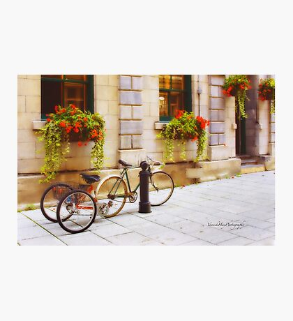 Tandem Bicycle and Flowers 2 Photographic Print