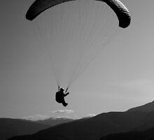 Aerial Exploration by Sheri Bawtinheimer