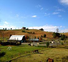 Southern Farm  by Rae Breaux
