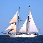 Schooner Westward over Stellwagon Bank by Steve Borichevsky