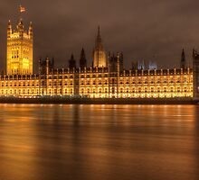Palace of Westminster by Conor MacNeill