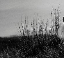 Ewe Lookin' At Me by David Brown