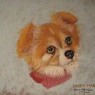 Daisy Mae - long-haired Chihuahua by Hilary Robinson