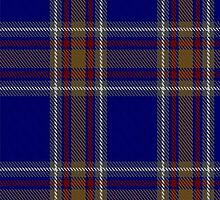 00465 Blue Rust Tartan  by Detnecs2013