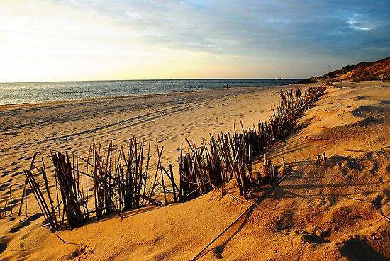 beach in list by hannes cmarits