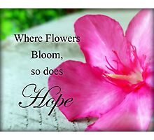 Where Flowers Bloom, So Does Hope Photographic Print