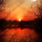 Magical Eve-McCarty Park © by Dawn M. Becker