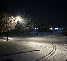Peaceful Snowstorm-Tracks by SeanCH