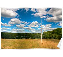 Birch Flagpole Poster