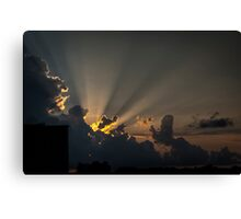Rays by Nature Canvas Print