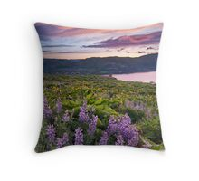 The Rowena Experience Throw Pillow