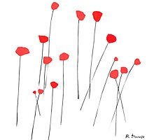 Poppies by Ruth Durose