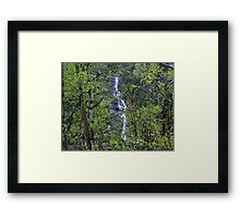 Waters in the Forest Framed Print