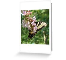 Butterfly and Abelia Greeting Card