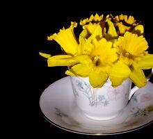 Daffodil Tea by Lynne Morris
