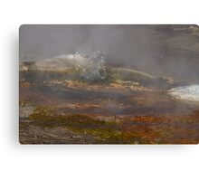 Bubbling geyser of El Tatio, Atacama Desert, Chile Canvas Print