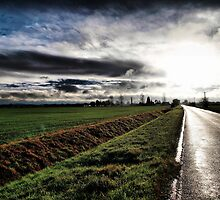 On The Road (1) by Nick Bland