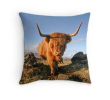 Highland Cow, Mull, Scotland Throw Pillow